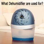 Uses of Dehumidifiers Image