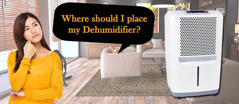 Where Should I Place My Dehumidifier Image