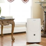 Whole House Dehumidifier image