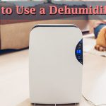 How to Use a Dehumidifier image