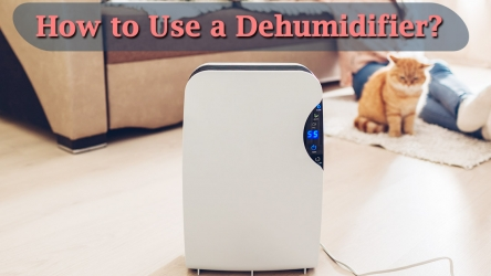 Dehumidifier User Guide – How to use it effectively in Winter/Summer?