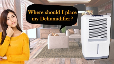 Where to place Dehumidifiers? – Best place for my Dehumidifier